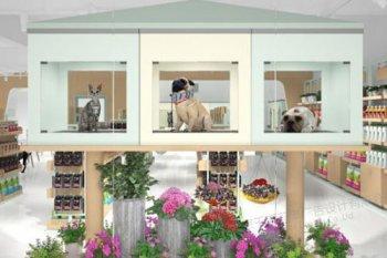 宠物店赚钱应该怎么做呢?