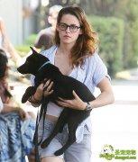 克里斯汀·斯图尔特抱养小狗抚慰情伤