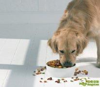 狗狗颗粒饲料加工方法