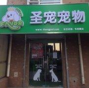 圣宠宠物北京海淀毛纺路宠物店