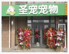 圣宠北京大兴旧宫新苑宠物店招聘宠物美容师1名