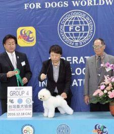 戴沛颀 圣宠主讲 台湾宠物美容审查员
