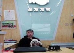 """""""一个信得过的宠物店""""-圣宠宠物(牡丹江江城美地店)"""