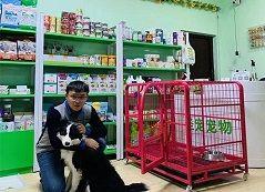 """""""精进技术,服务大家""""-圣宠宠物(哈尔滨哈西阳光家园店)"""