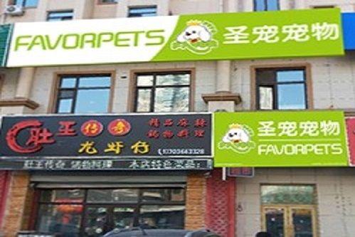 圣宠宠物哈尔滨远大都市明珠店