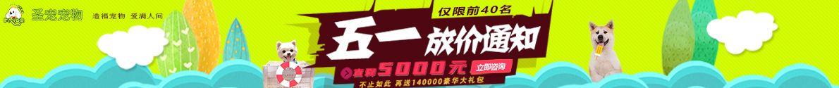圣宠宠物加盟 5月开店直降5000+享140000大礼包