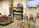 圣宠宠物(沈阳万科明天广场店),盛大开业,送优惠