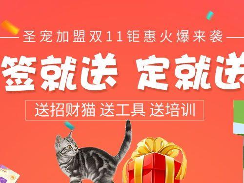 双11钜惠   签就送 定就送 送工具 送招财猫 送培训
