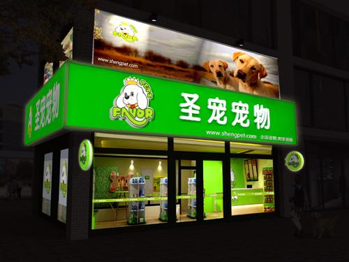 圣宠宠物店夜景