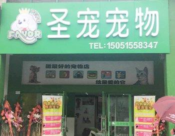 圣宠宠物(扬州江都宠物连锁店)